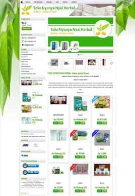 Paket Toko Online - www.nyonyanyai.com