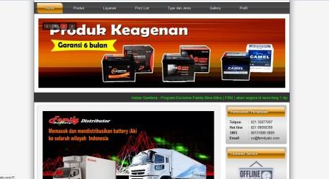 Jasa Pembuatan Website di Bagan Siapi-api