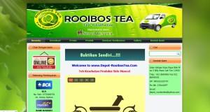 Jasa Pembuatan Website di Dharmasraya