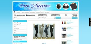dien collection