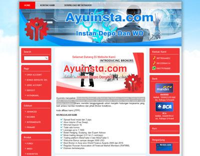 website-ayuinsta