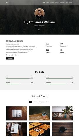 contoh desain website pribadi IT