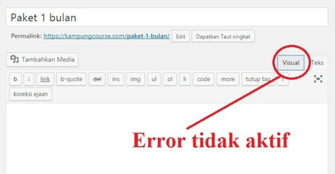 error visual editor wordpress tidak aktif
