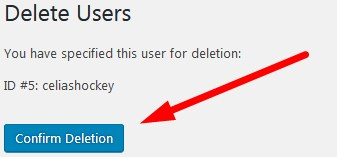 user confirm deletion