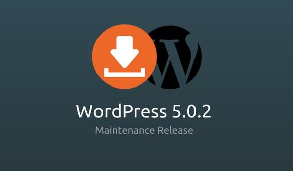 WordPress 5.0.2
