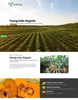 contoh desain paket g pt-youngindoorganic